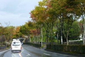Jkkouyouhajimep1020075